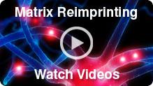 Matrix Reimprinting Videos